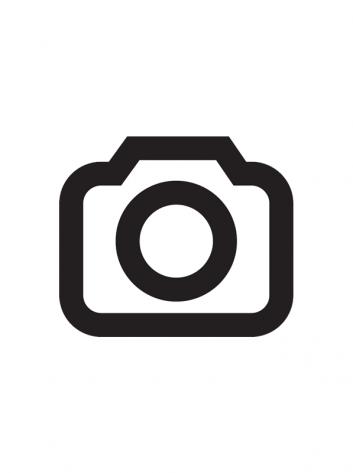 SEnuke TNG Pro