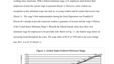 economics portfolium minimum wage research paper