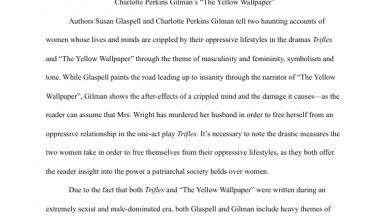 essay  portfolium literary analysis examining a patriarchal society
