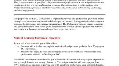 Career Portfolio Examples Fsu