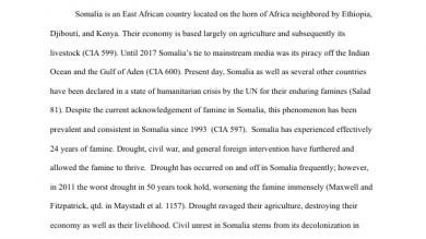 Jaselin Drown  Portfolium Research Essay On The Somali Famine