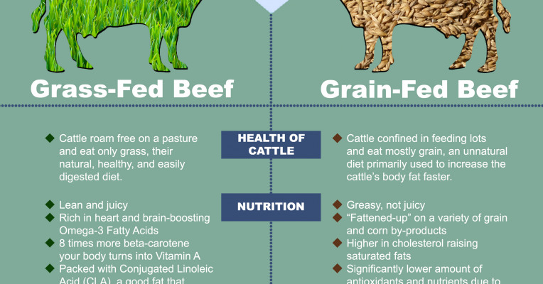 grass fed beef vs grain fed Texas a&m university research concludes that ground beef from grass-fed cattle is not healthier than that from conventionally raised ground beef.